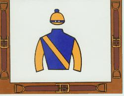 Jockey Silk Invitations