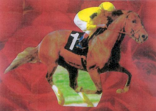 Laminated Jackpot Horses