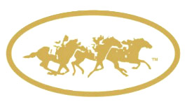 3 Horse & Jockey Racing Gold Stickers