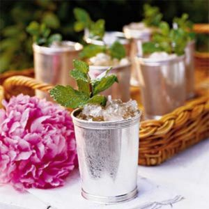 Mint julep and basket tray coaster