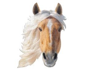Horse Head Puzzle